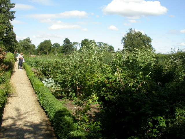 Down House, kitchen garden - geograph.org.uk - 1399173