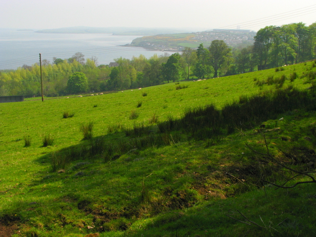 Fields by Carnfunnock Country Park - geograph.org.uk - 797985