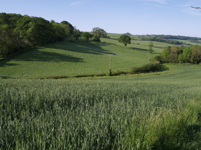 Fields from East Devon Way - geograph.org.uk - 448978