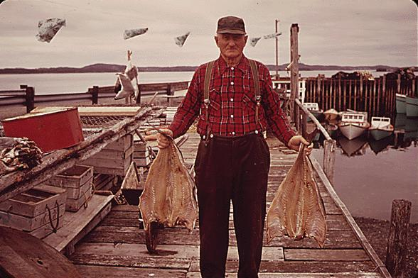Fishing industry in canada wikipedia for Portant industriel