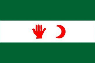 Drapeau Algérien Flag_Algeria