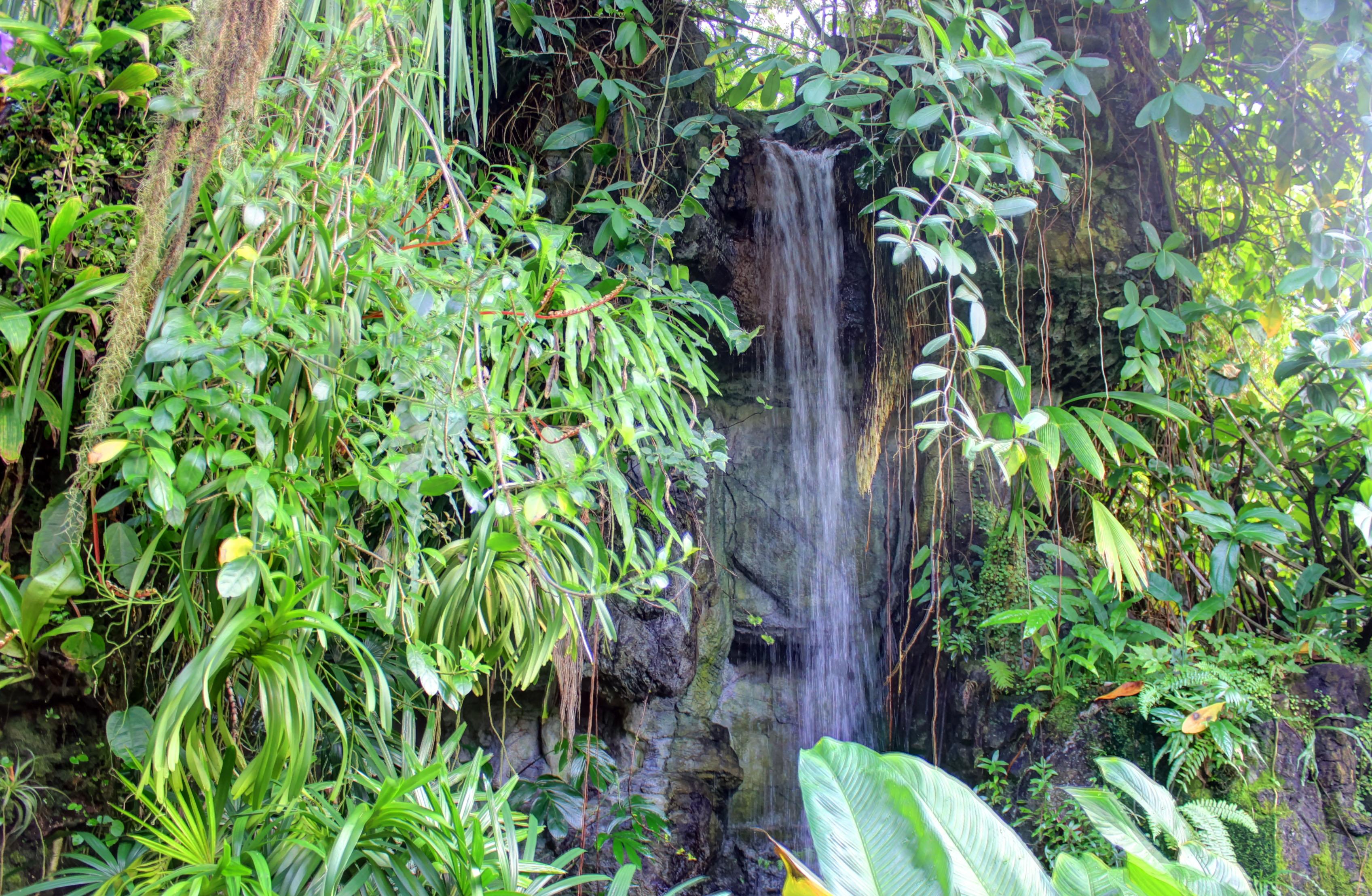 filegfp climatron waterfall st louis botanical gardens - Botanical Garden St Louis