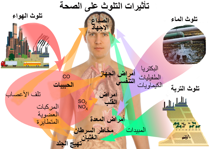 ملف:Health effects of pollution- Arabic.png