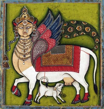 Kamadhenu pictured with her calf - Kamadhenu