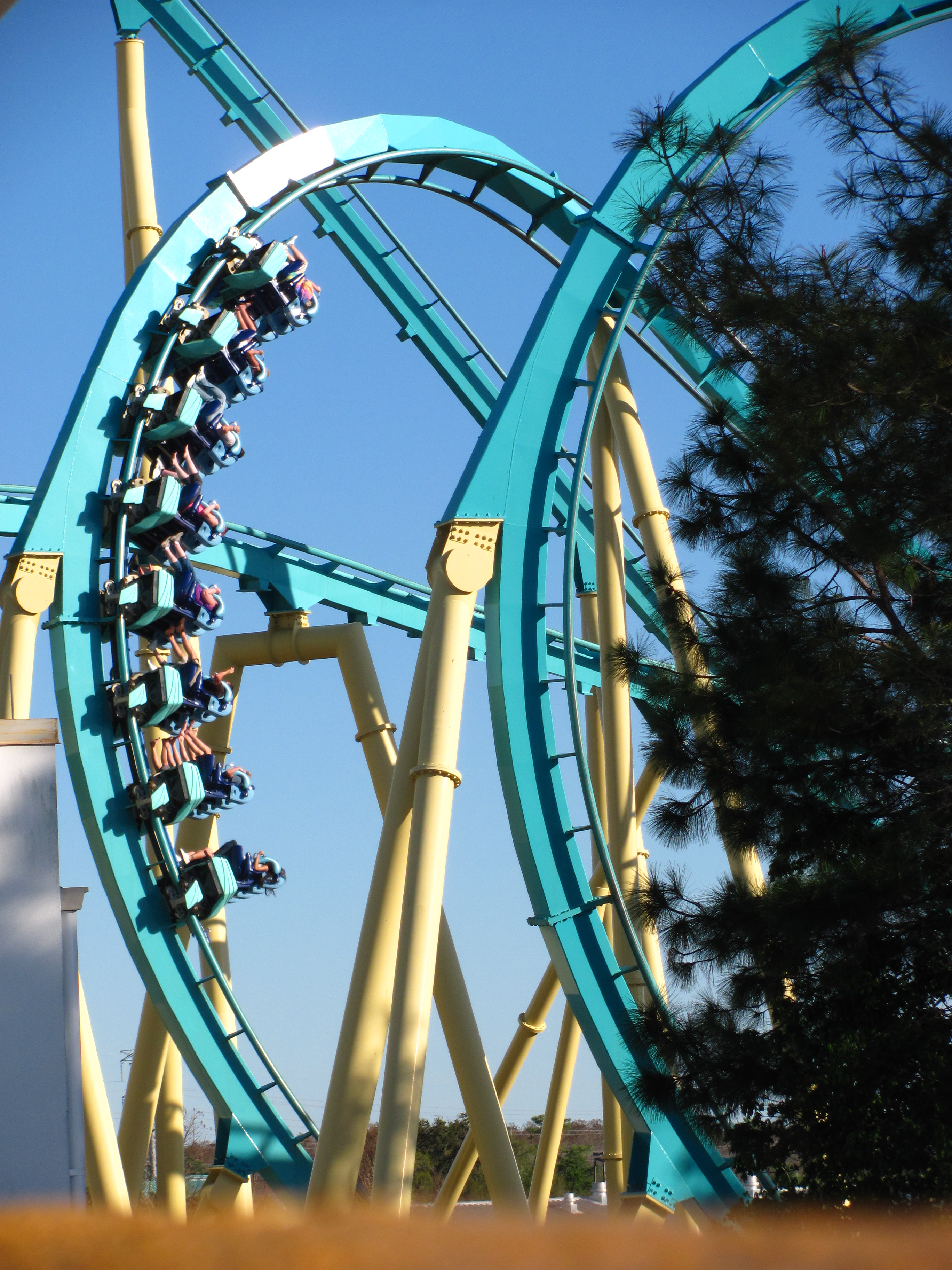 File:Kraken at SeaWorld Orlando 30.jpg - Wikimedia Commons