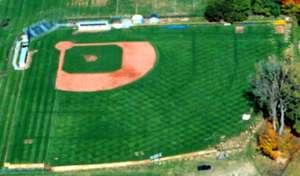 Littick Field Wikipedia