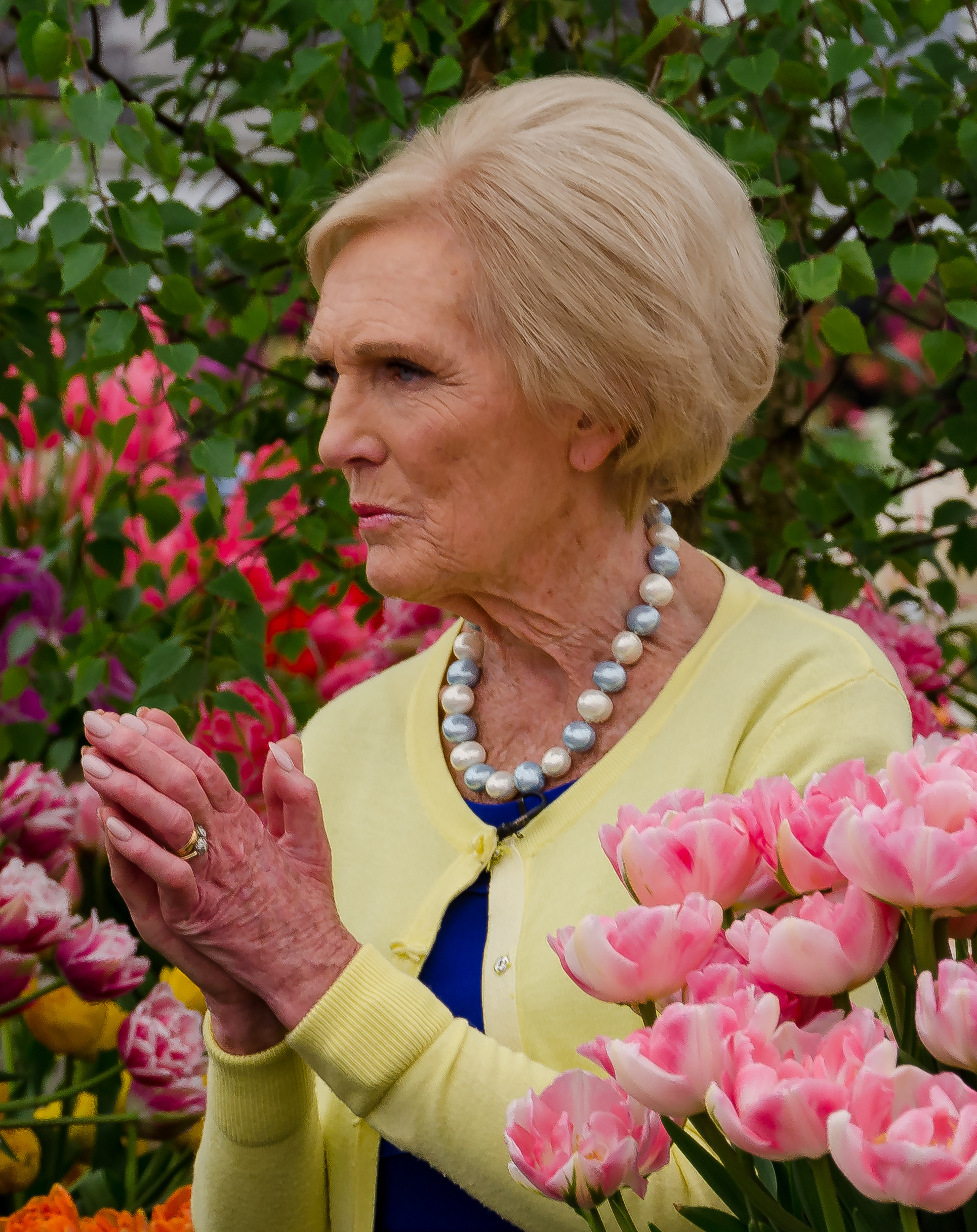 Mary Berry image