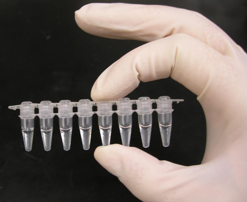 Standard PCR tubes