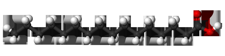 Filepalmitic acid 3d ballsg wikimedia commons filepalmitic acid 3d ballsg pooptronica