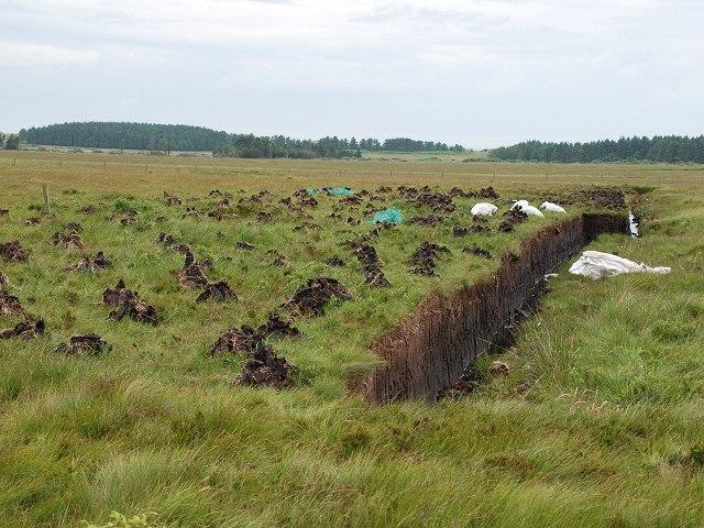 File:Peat cutting - geograph.org.uk - 1385530.jpg