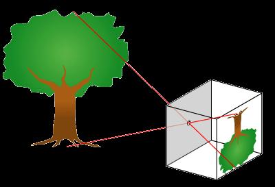 Den lilla öppningen i en hålkamera gör att en bild kan återskapas på hålkamerans baksida.