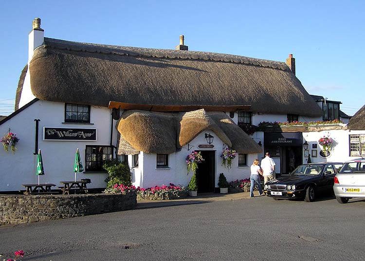 Thatching Wikipedia