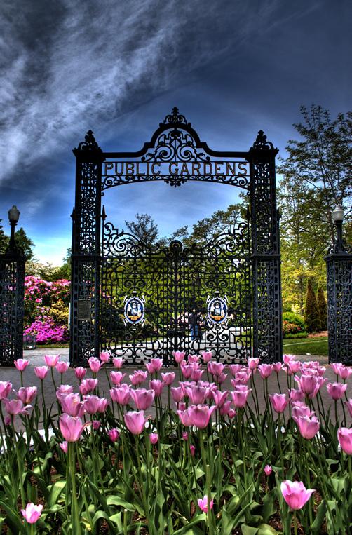 Halifax Public Gardens entrance gate with purple flowers below, city of Halifax