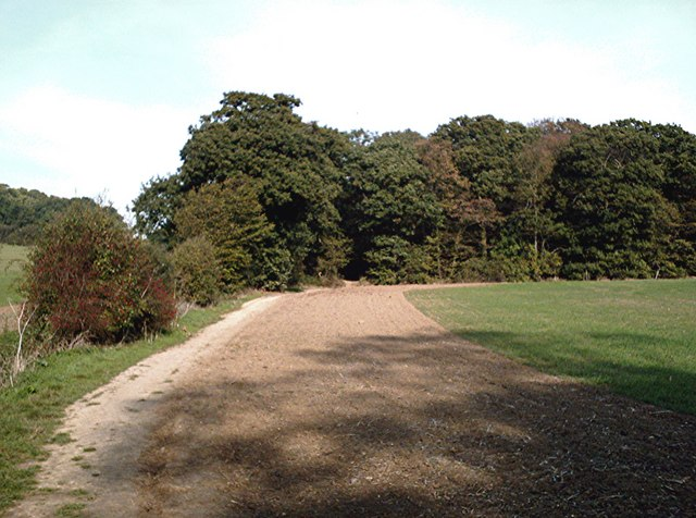 Roach Valley Way - Cotton's Wood - geograph.org.uk - 272922