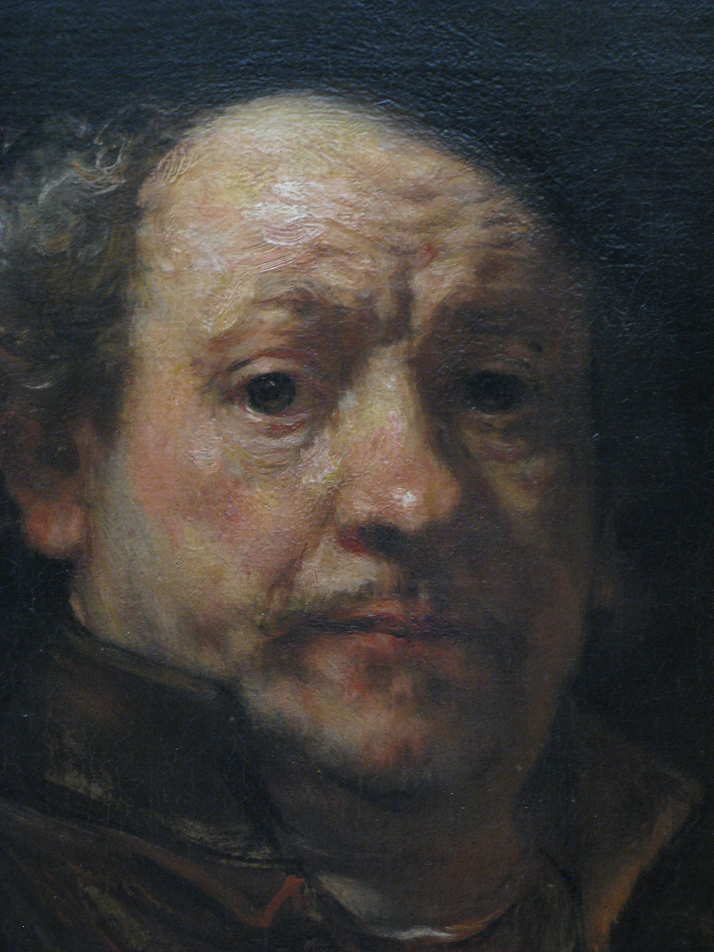 a focus on the art career and success of rembrandt harmenszoon van rijin Famous people in art famous people born in leiden rembrandt harmenszoon van rijn attended elementary school from 1612 to 1616 and then attended the latin school in leiden but it is believed that over the course of his career he had fifty or so students the first amsterdam period.
