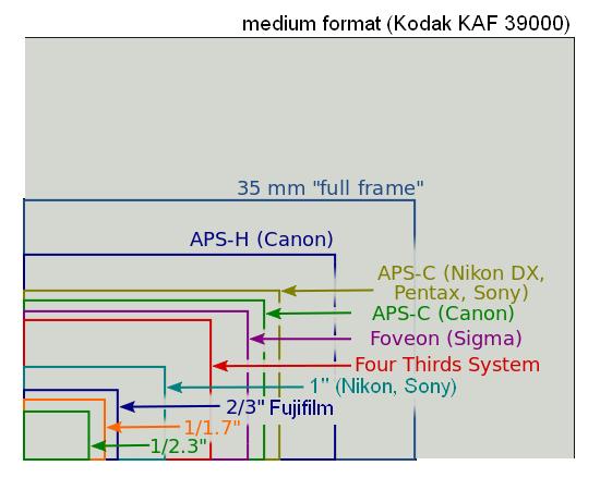 File:Sensor sizes overlaid inside 2014.png