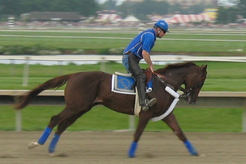 Plik:Smarty jones.jpg