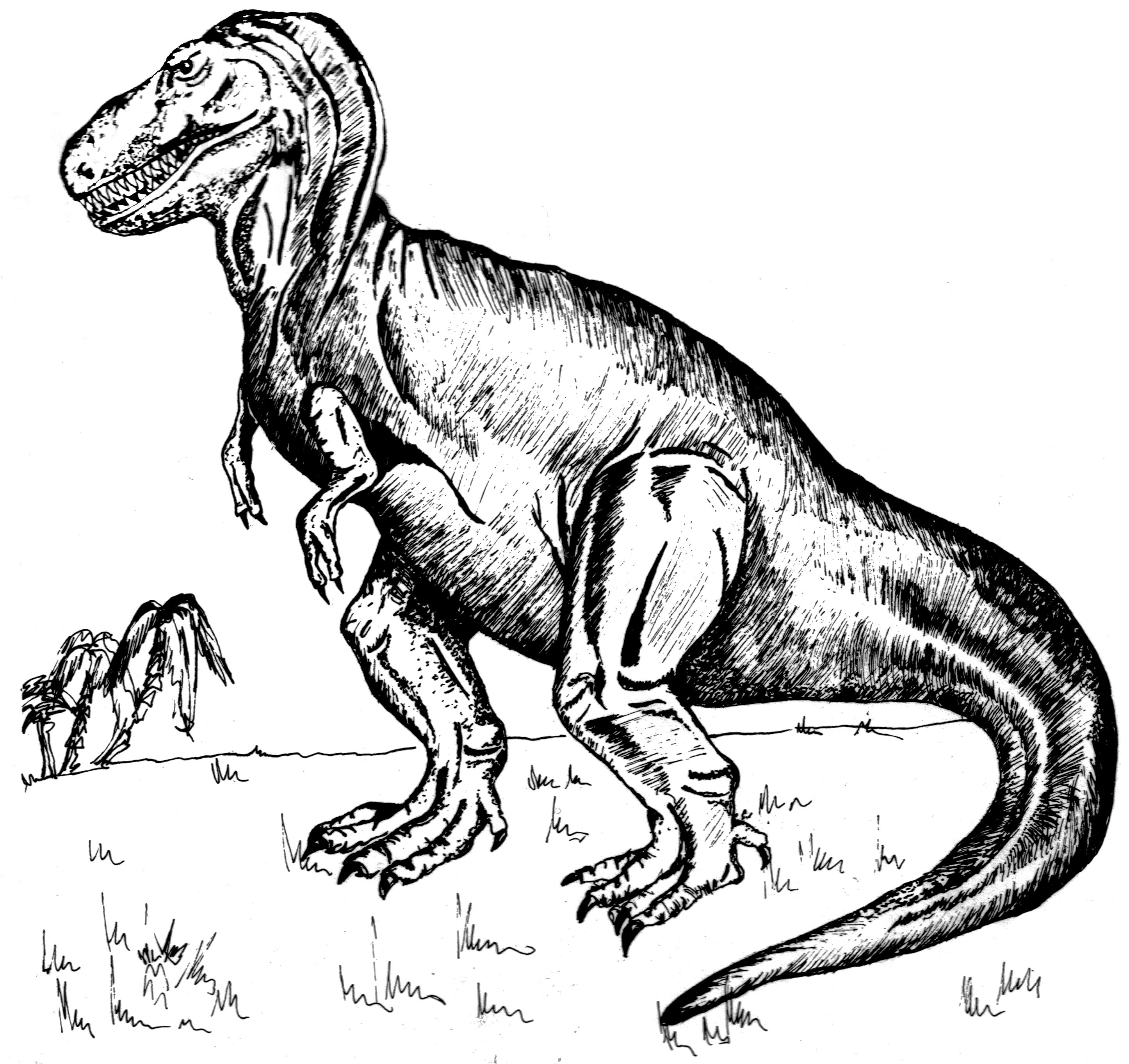 Line Art Dinosaur : File tyrannosaurus psf wikimedia commons