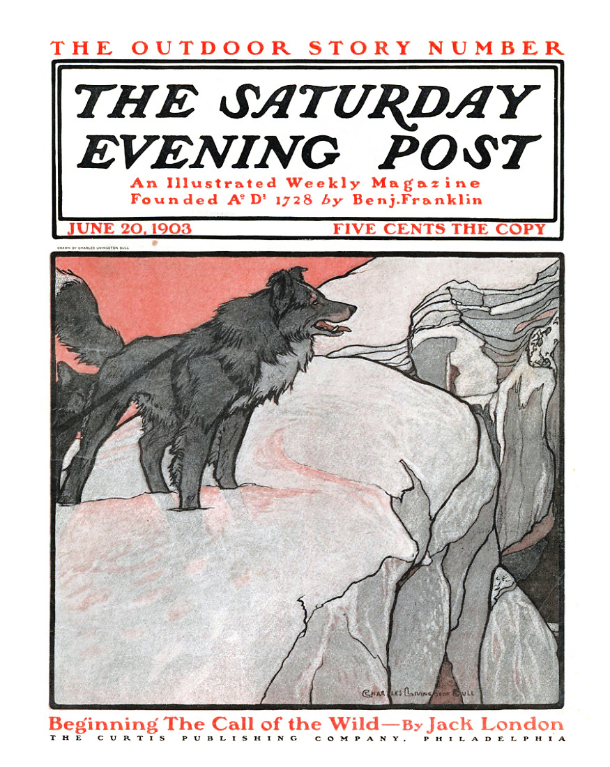a literary analysis of the novel the call of the wild