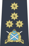 A PAF air chief marshal's shoulder rank insignia from 2006
