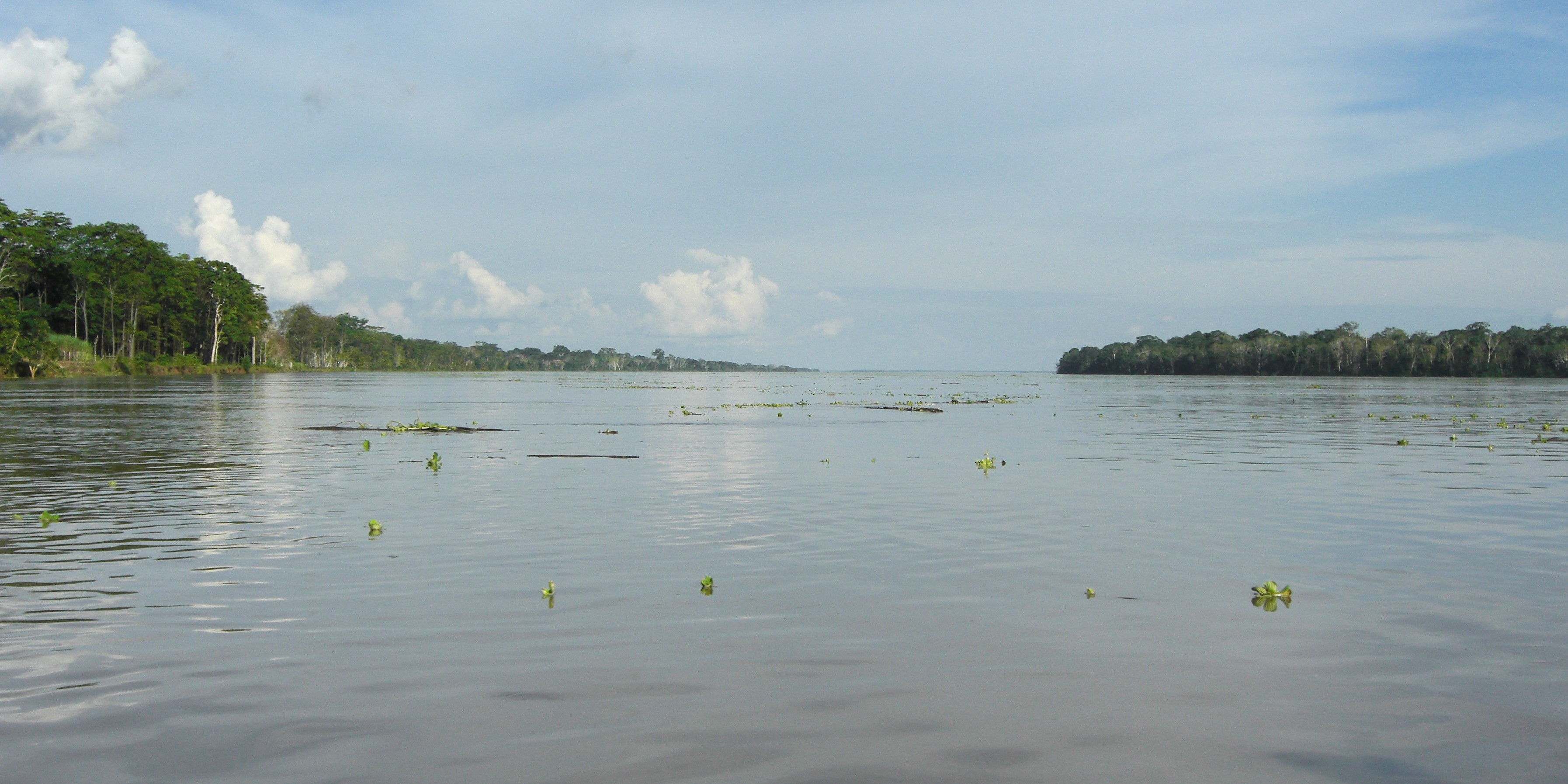 how wide is the amazon river