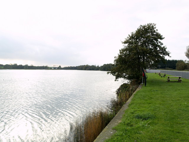 File:At the side of Lough Aderry (west) - geograph.org.uk - 594396.jpg