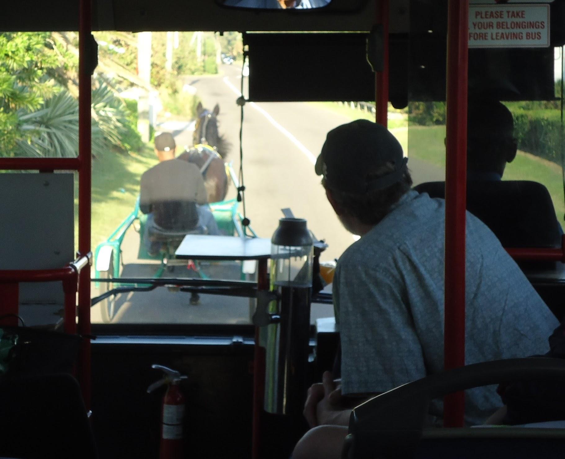 File:Bermuda (UK) photos number 40 view from bus behind