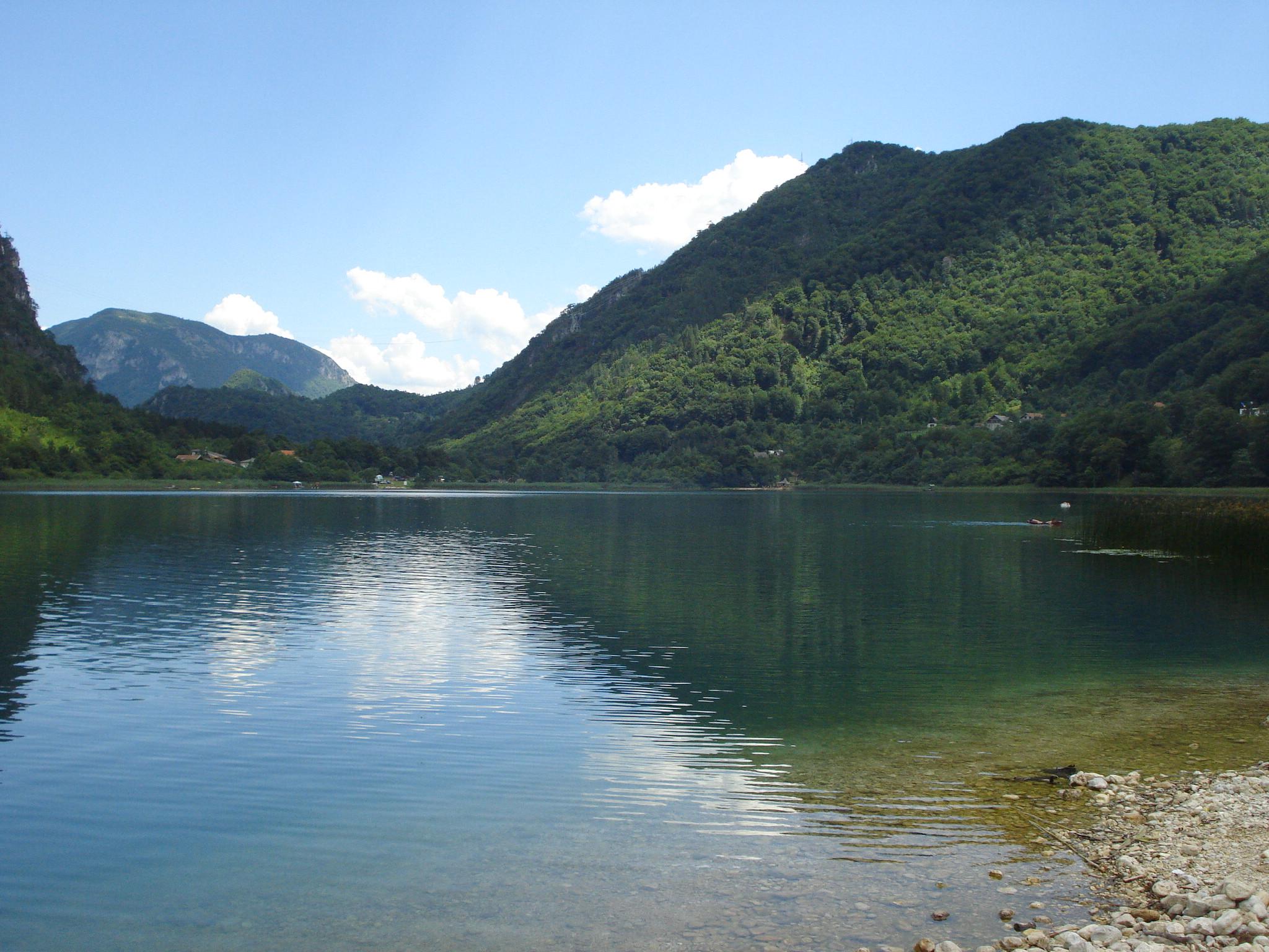Šaran Boracko_jezero
