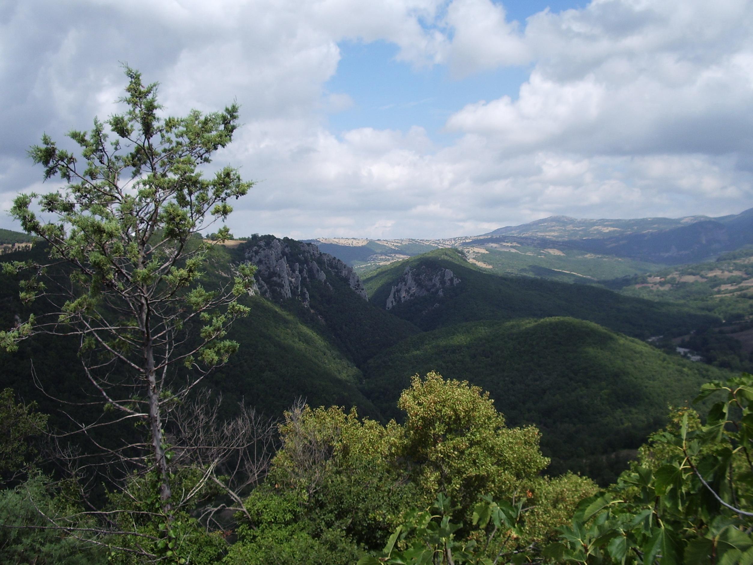 Veduta del Bosco dei Rocconi da Rocchette di Fazioi