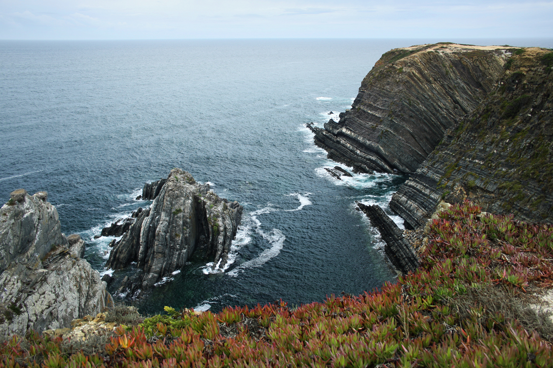 By Miguel Virkkunen Carvalho from Lahti, Finland (Cabo Sardão Uploaded by Markos90) [CC BY 2.0 (http://creativecommons.org/licenses/by/2.0)], via Wikimedia Commons