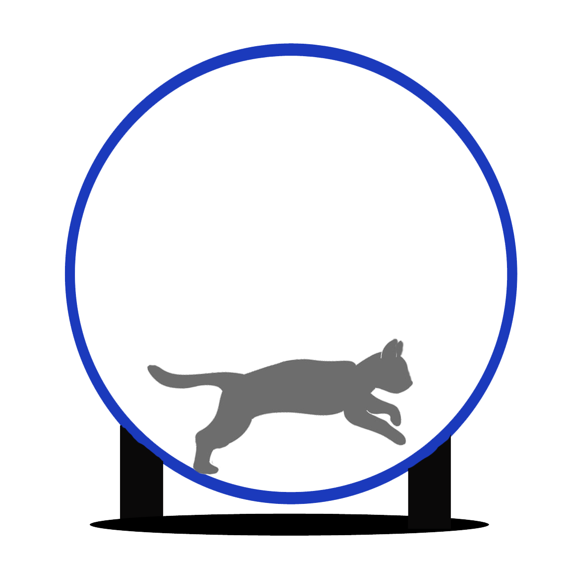 File:Cat wheel.png