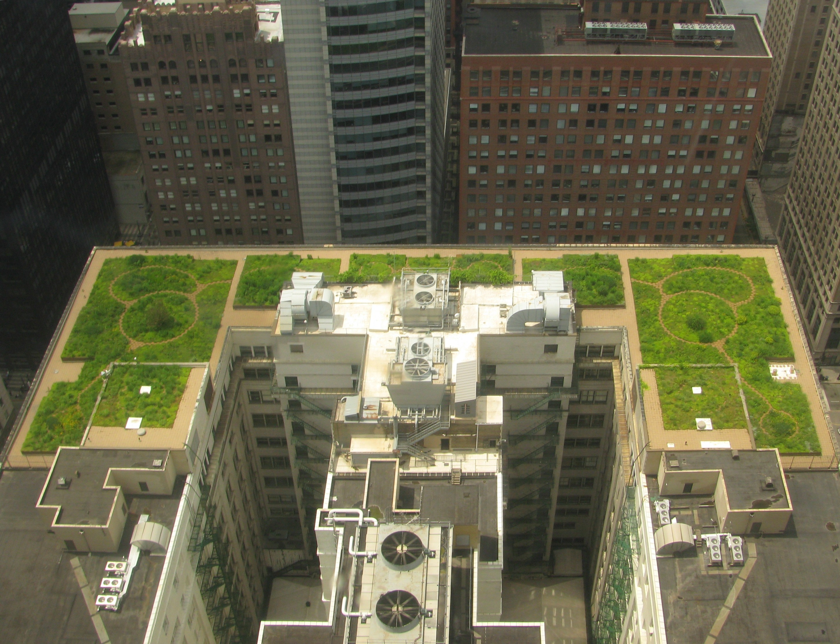 Wikipedia:Valued picture candidates/Chicago City Hall Green Roof ...