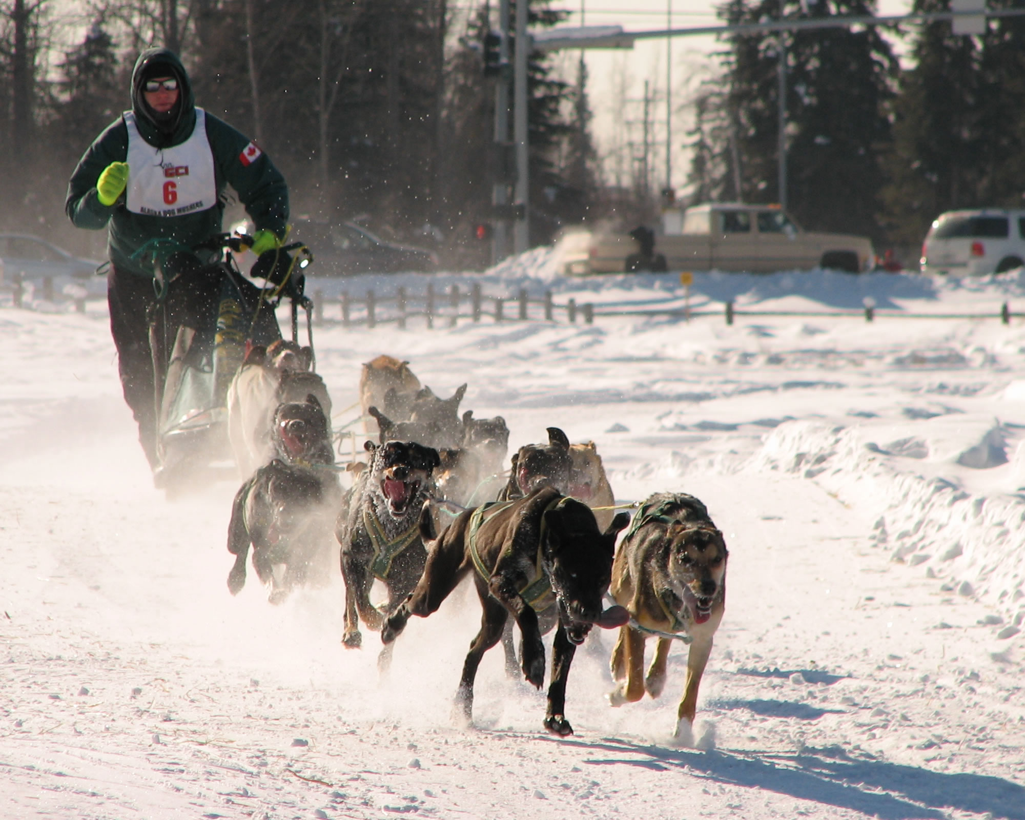 Dogsled racing Alaska Grande Prairie, Alberta Hosts Arctic Winter Games