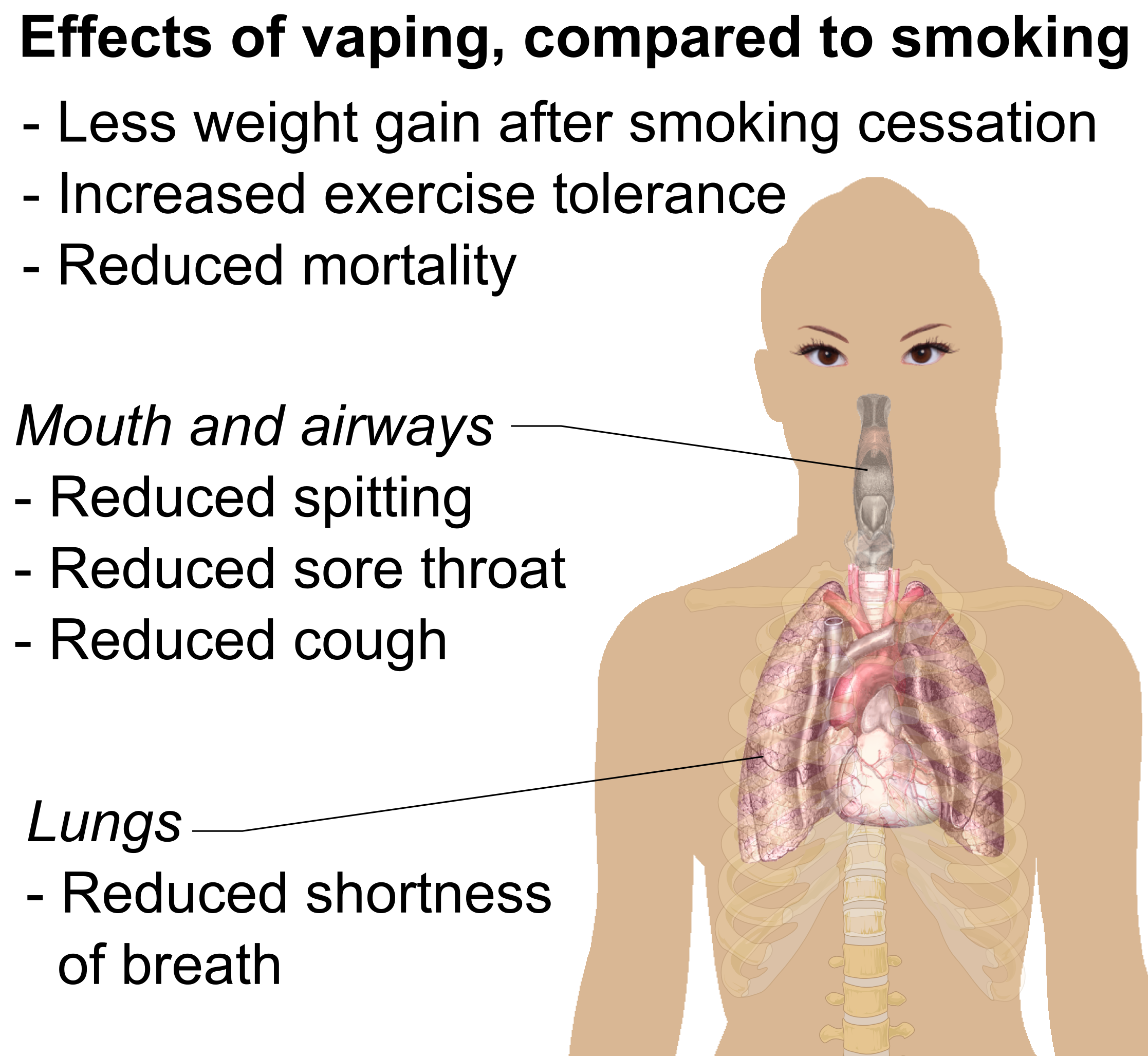 the negative effects of cigarette smoking on the human mouth Many people are aware of the common knowledge of the negative effects that smoking effects of smoking on the respiratory system cigarette smoking.