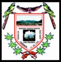 File:Escudo del distrito de Damaso Beraun.jpg