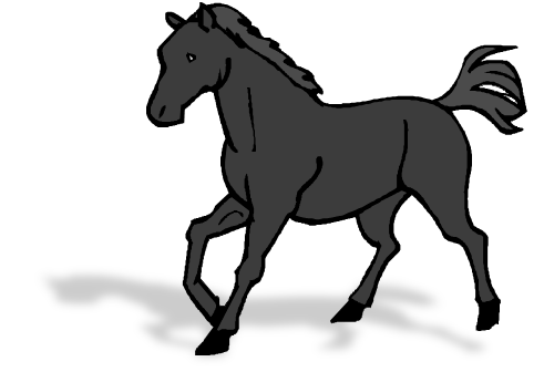 Clipping Types Horses Horse Clip Types