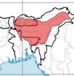 Kamarupa Kingdom
