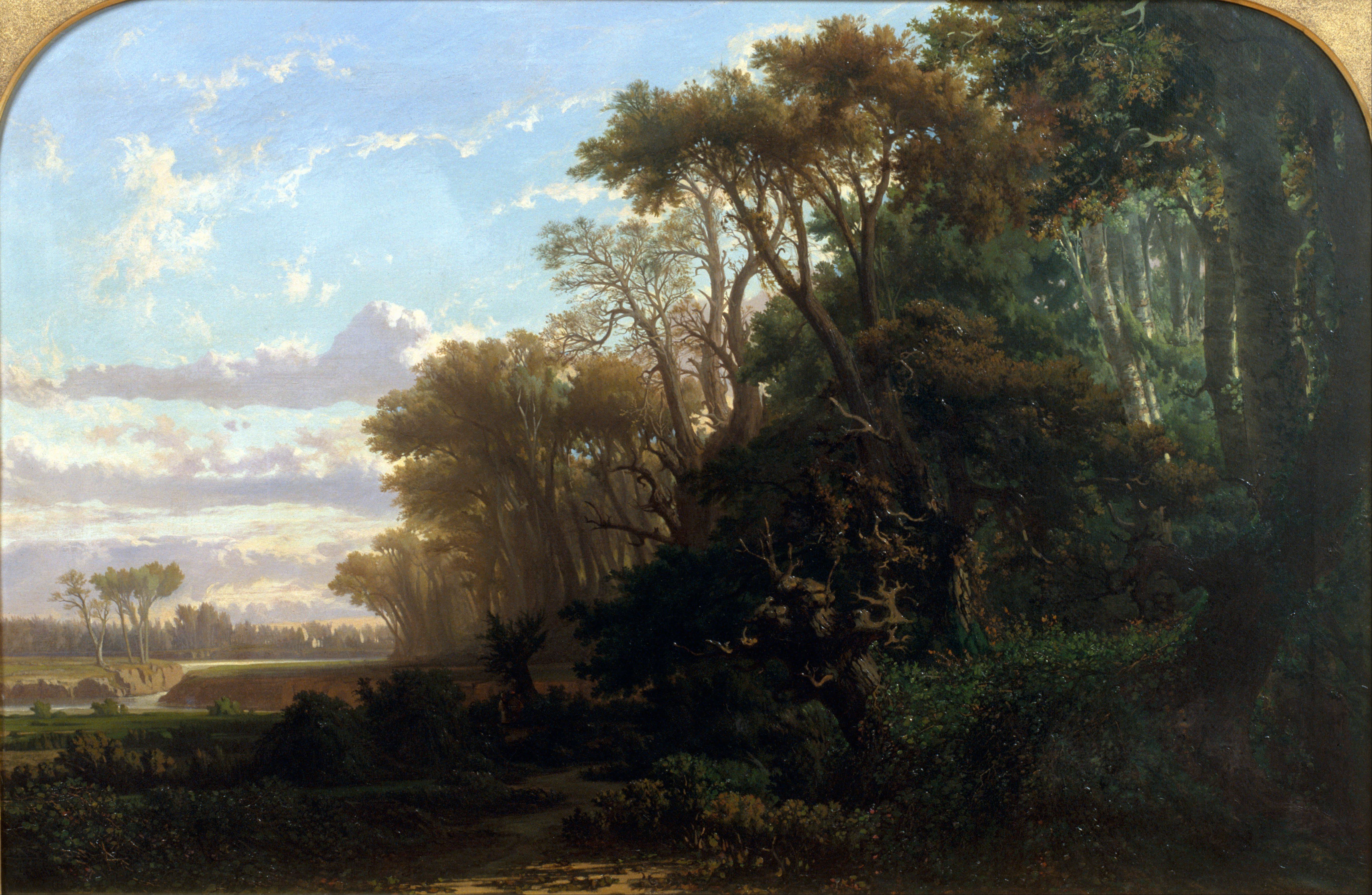 File Llu 237 S Rigalt Landscape With Woods Google Art