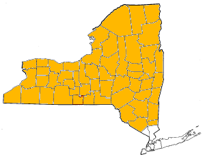 Map-upstate-ny.png