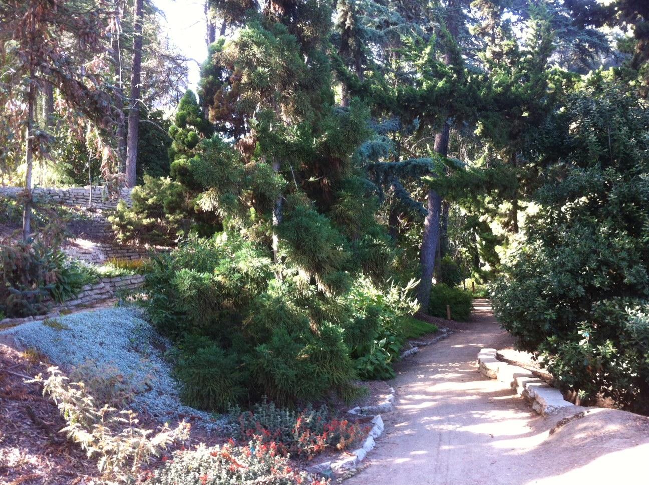 File:Mildred E. Matthias Botanical Gardens 04.JPG
