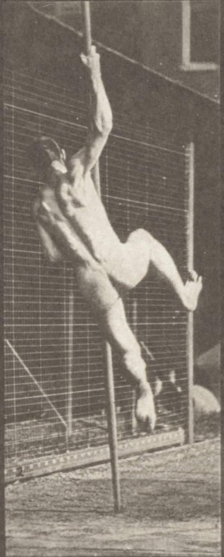 Naked Pole Vaulting Man 76
