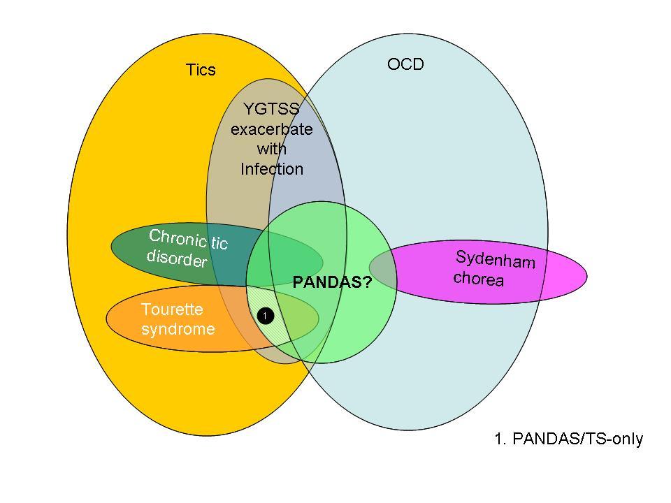 Filepandas Ts Tics Ocd Jpg
