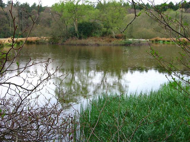 Robbie Rossie's Loch - geograph.org.uk - 590324