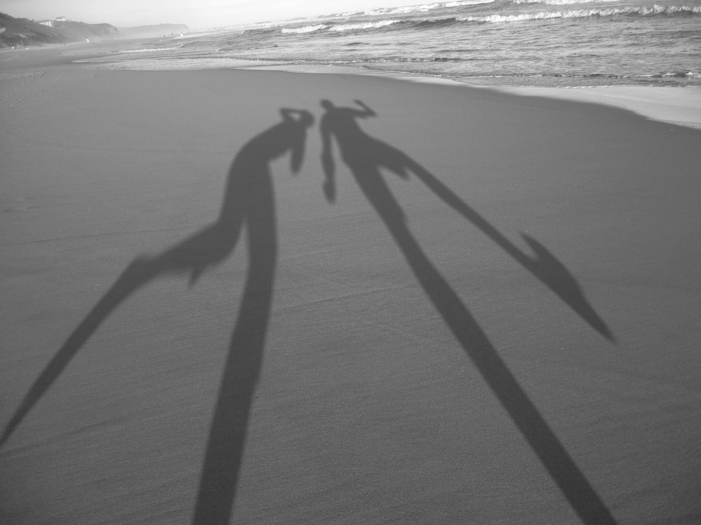 http://upload.wikimedia.org/wikipedia/commons/8/82/Shadows-in-the-sand.jpg