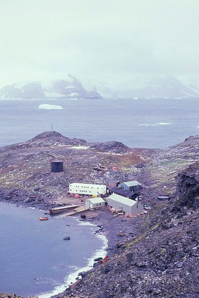 https://upload.wikimedia.org/wikipedia/commons/8/82/Signy_Research_Station_fish8479.jpg