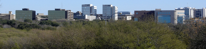 South Texas Medical Center (seen from downtown San Antonio).jpg