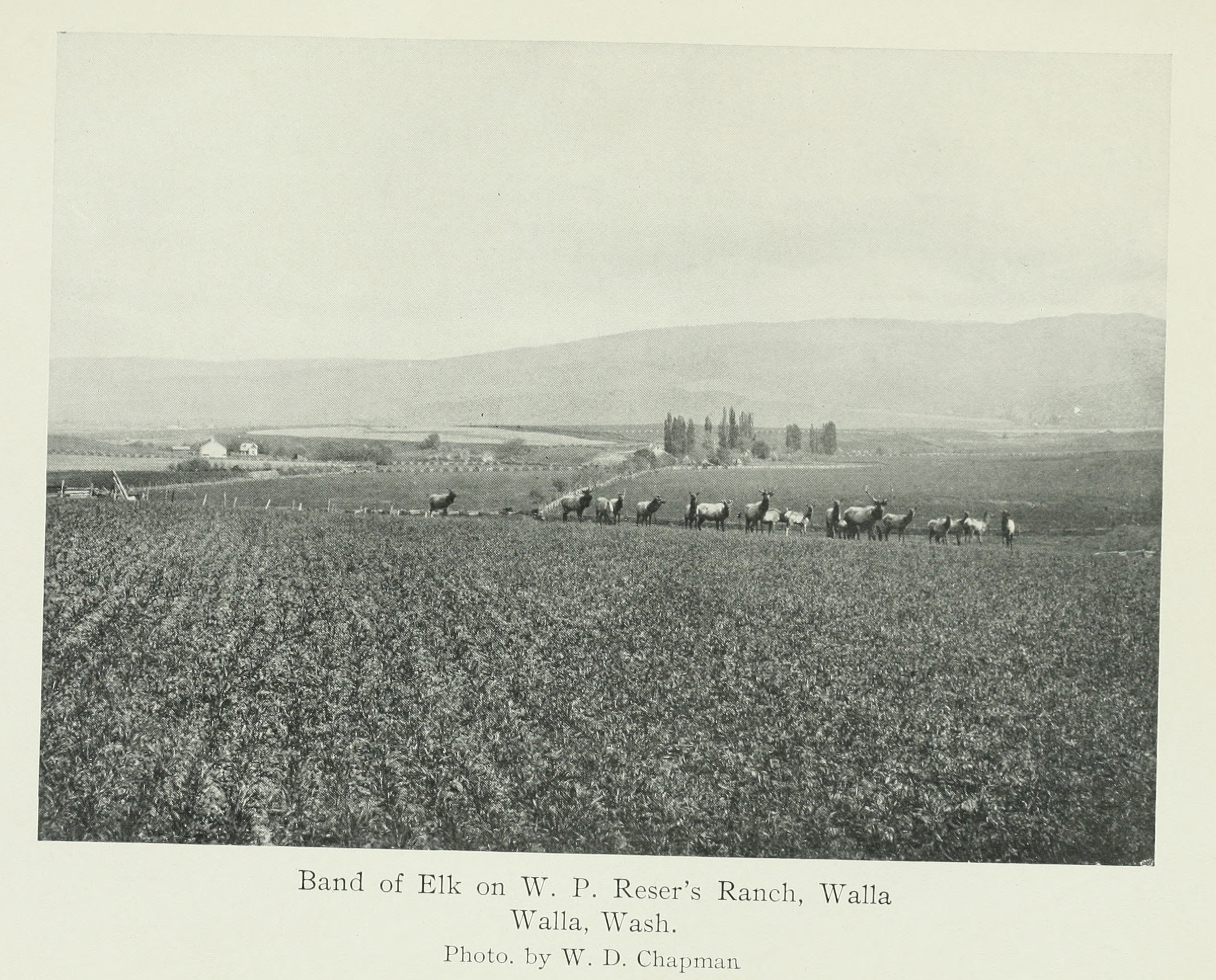 The Columbia River Its History, Its Myths, Its Scenery, Its Commerce p 533.png