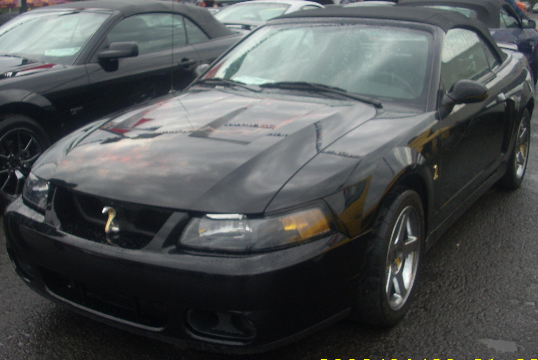 File:Tuned SN95 Ford Cobra Mustang Convertible (Sterling Ford).jpg ...
