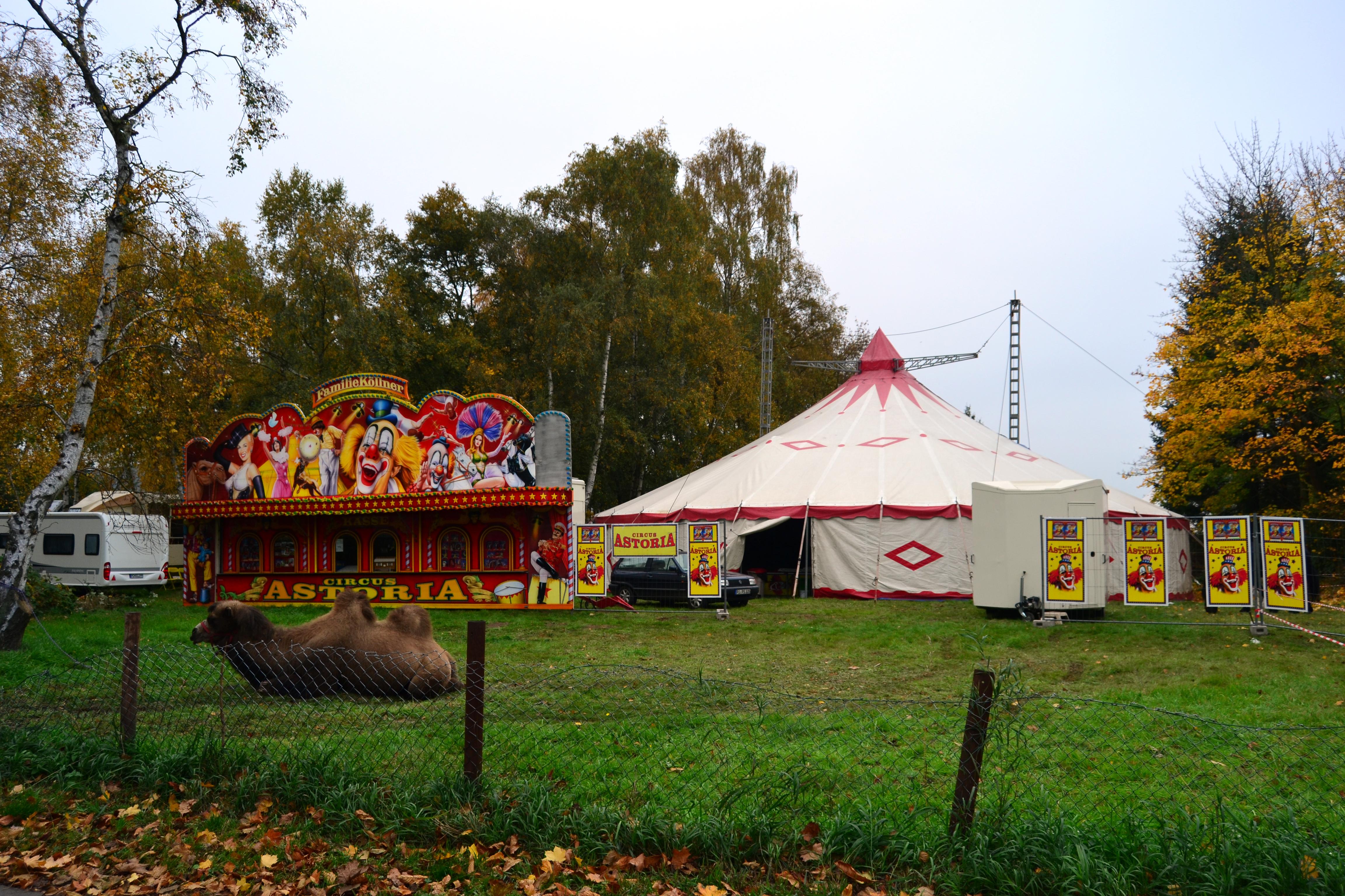 Zirkus Astoria
