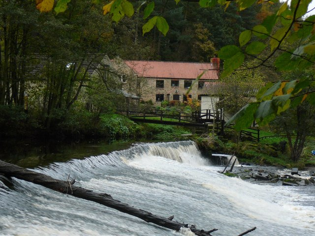 Weir in Nidd Gorge - geograph.org.uk - 1422723